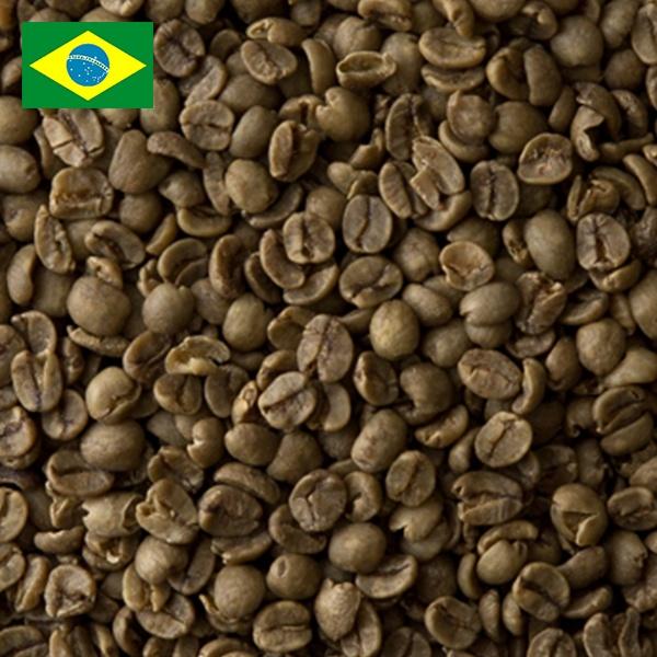 カフェインレス ブラジル(スイス式水抽出法)