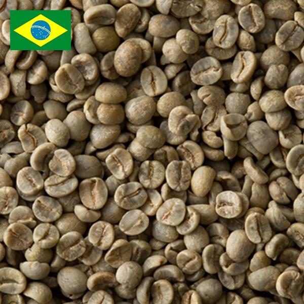 ブラジル No2 セミウオシュド S18