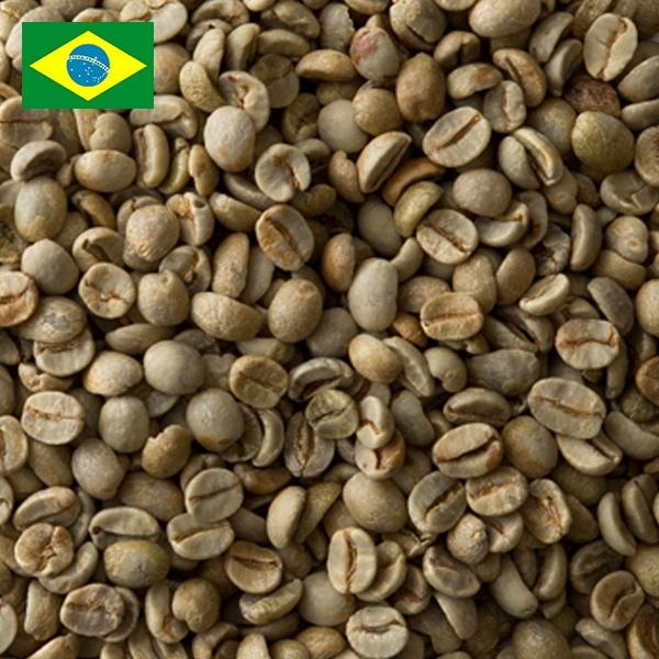 ブラジル No2 18