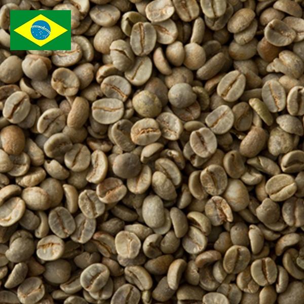 ブラジル No2 19